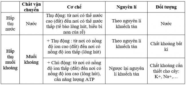 đáp án bài 2 trang 9 sgk sinh học 11- cơ chế hấp thụ ion khoán ở rễ cây
