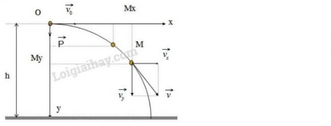 Hướng dẫn giải bài 3 trang 88 sgk Vật Lý lớp 10
