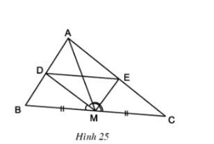 Hình 25