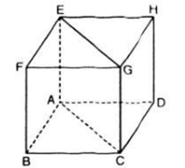 Hình vẽ bài 1 trang 97 sách giáo khoa hình học lớp 11
