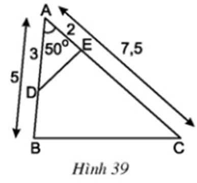 Hình 39