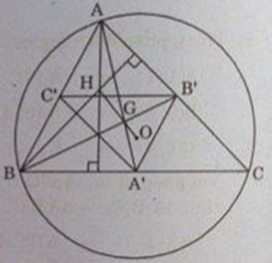 Hình vẽ bài 2 trang 125 sách giáo khoa hình học lớp 11