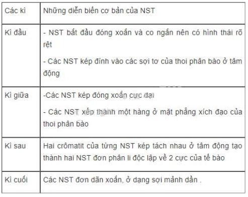 Đáp án bài 3 trang 30 sgk sinh học 9