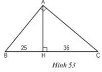 Hình 53
