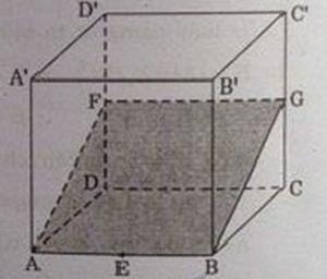 Hình vẽ bài 5 trang 126 sách giáo khoa hình học lớp 11 ảnh 1