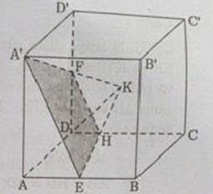 Hình vẽ bài 5 trang 126 sách giáo khoa hình học lớp 11 ảnh 3