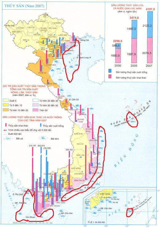 Các ngư trường trên Atlat Địa lí Việt Nam.
