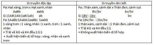 Đáp án bài 3 trang 43 sgk sinh học 9