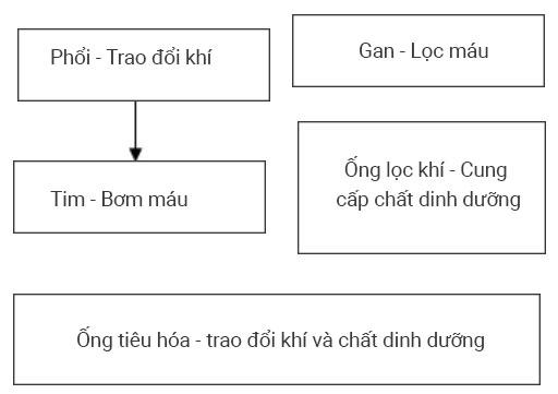 đáp án câu hỏi thảo luận 1 trang 96 sgk sinh 11
