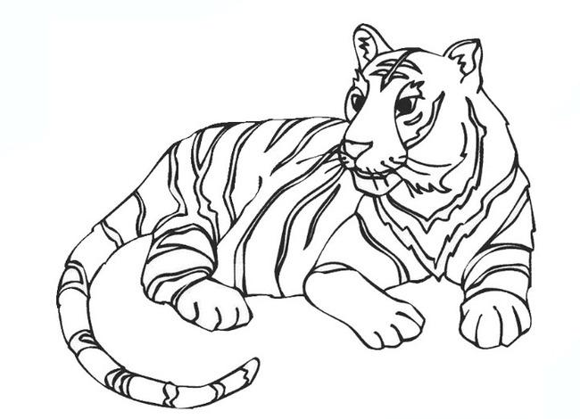 Tranh tô màu chú hổ nằm