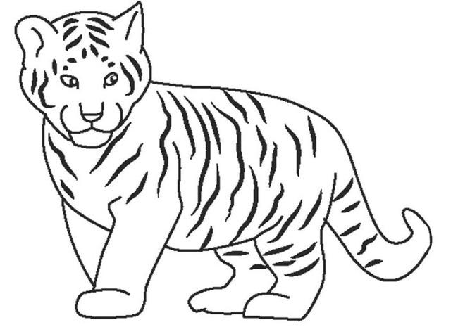 Tranh tô màu chú hổ đứng