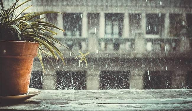 Tuyển chọn 4 bài văn mẫu viết văn tả trận mưa qua ý thơ Trần Đăng Khoa