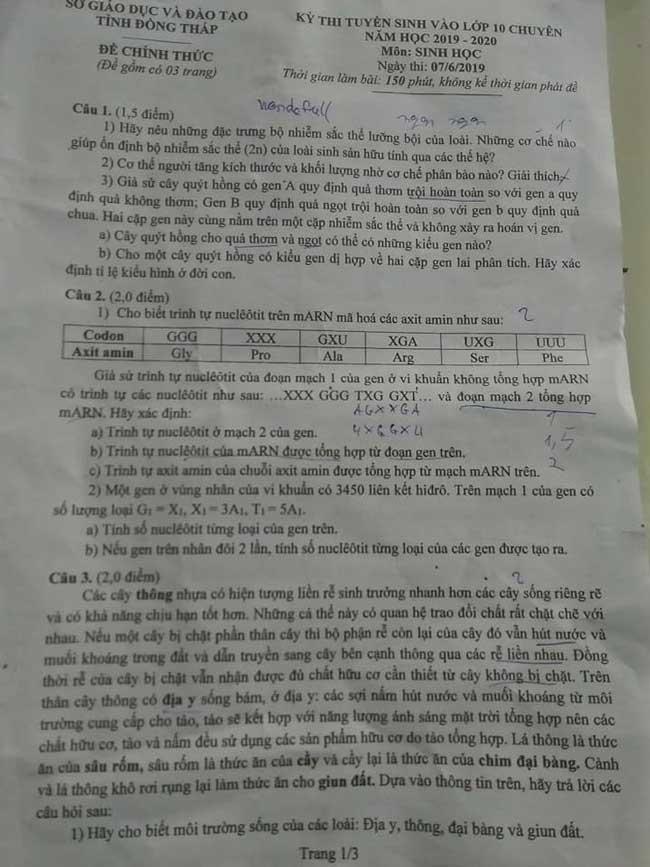 trang 1 đề thi vào lớp 10 chuyên Sinh tỉnh Đồng Tháp năm 2019