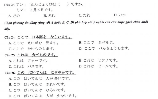 Đề thi vào lớp 10 môn tiếng Nhật TP Hà Nội năm 2019 phần 4