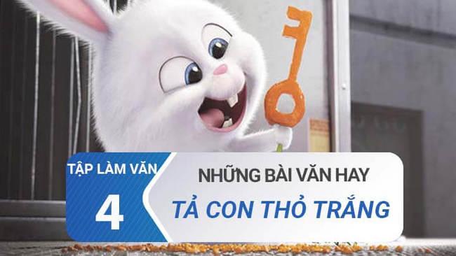 Văn mẫu Tả con thỏ trắng lớp 4