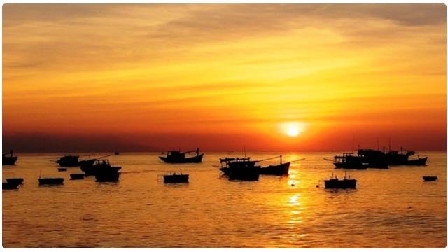 Hình ảnh đoàn thuyền đánh cá