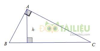 Lý thuyết diện tích tam giác  và các dạng bài thường gặp ảnh 2