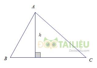 Lý thuyết diện tích tam giác  và các dạng bài thường gặp ảnh 1