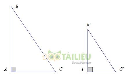 Lý thuyết các trường hợp đồng dạng của tam giác vuông ảnh 2