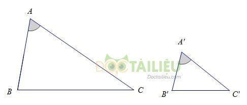 Lý thuyết trường hợp đồng dạng thứ hai và các dạng bài thường gặp ảnh 2