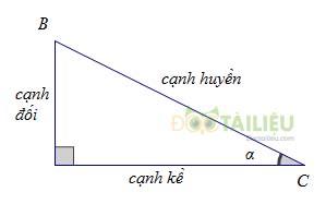 Lý thuyết Tỉ số lượng giác của góc nhọn và các dạng bài thường gặp ảnh 1