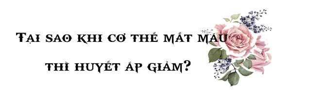 Hướng dẫn trả lời câu hỏi thảo luận trang 83 SGK Sinh 11