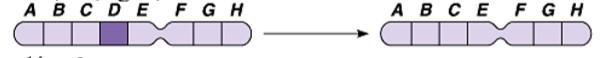 Đề thi thử môn Sinh THPT Quốc gia 2020 mã đề 07 103