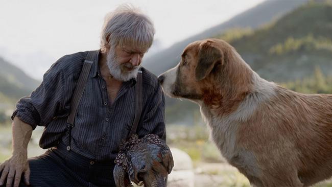 Hình ảnh chú chó Bấc và ông chủ Thoóc-tơ