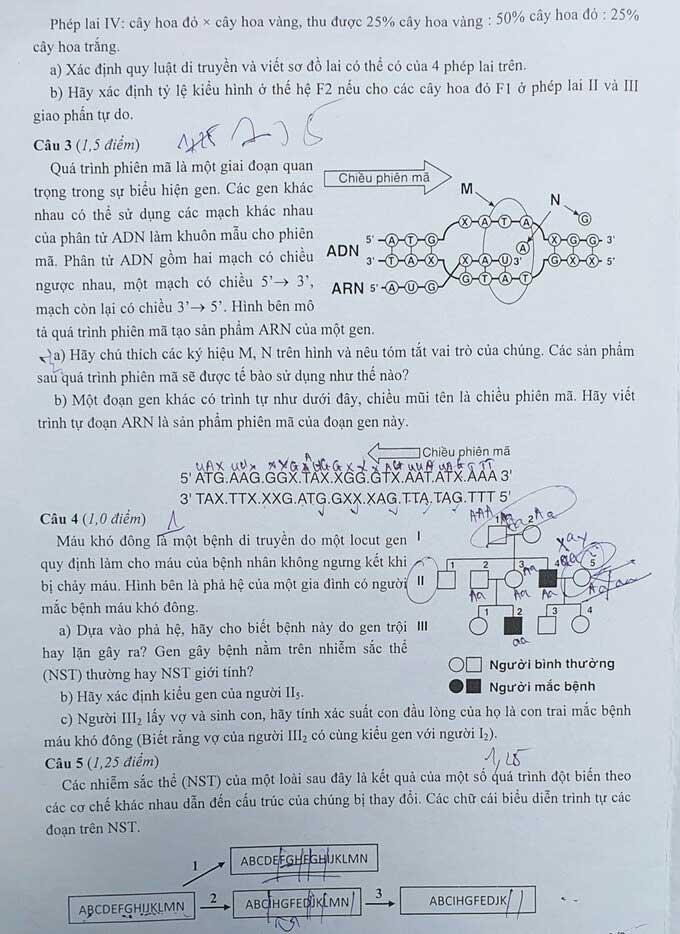 Trang 2 đề thi vào lớp 10 môn Sinh chuyên năm 2020 Chuyên Sư phạm HN