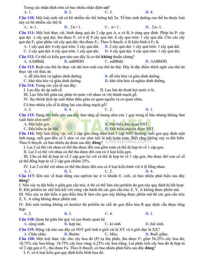 Đề thi thử tốt nghiệp THPT 2020 môn Sinh có đáp án của trường THPT Quang Hà lần 3 trang 4