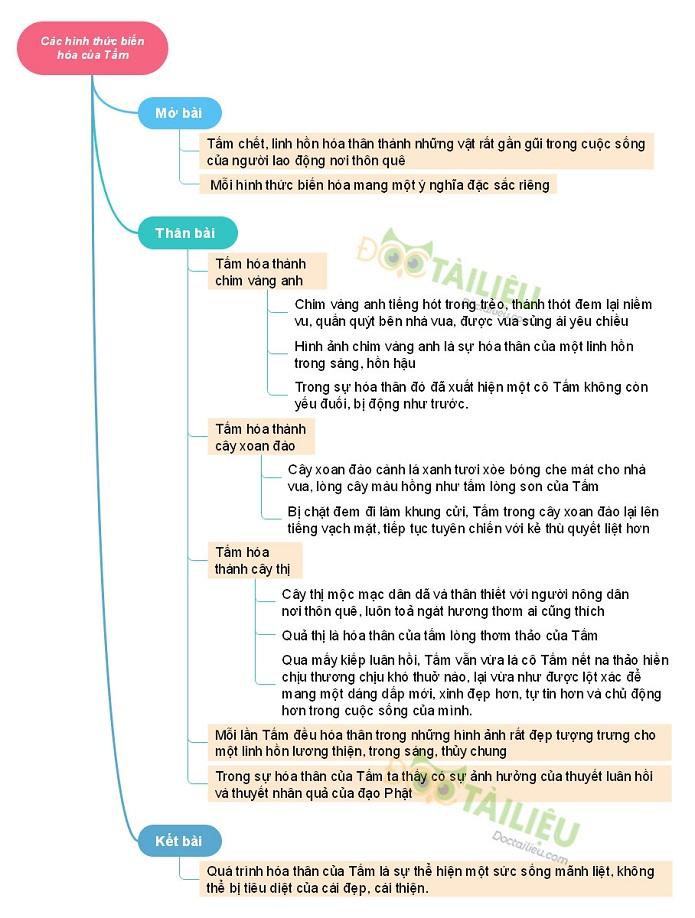 Sơ đồ tư duycác hình thức biến hóa của Tấm trong truyện Tấm Cám