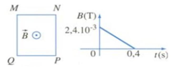 Khung dây MNPQ cứng, phẳng, diện tích 50cm2, gồm 1000 vòng dây. Khung dây được hình ảnh