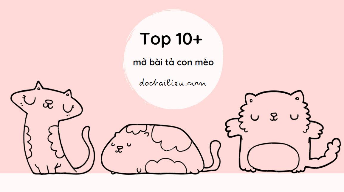 mở bài tả con mèo độc đáo để có bài văn hay