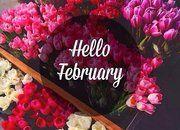 Tuyển chọn STT chào tháng 2 hay và ý nghĩa chào đón xuân về
