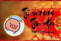 Tử vi Tân Hợi 2019 nữ mạng: Đầu thì may mắn sau thì bình an