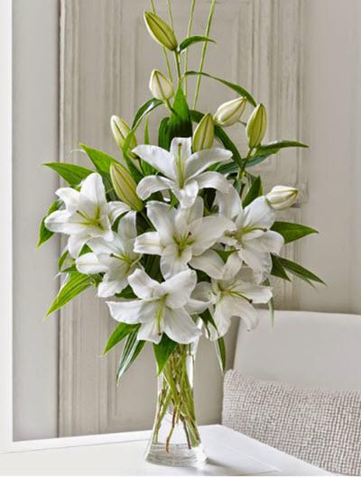 Cắm hoa ly đẹp